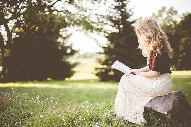 the diary of a lutyen's princess