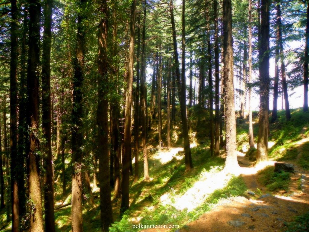 Dalhousie Dainkund Peak