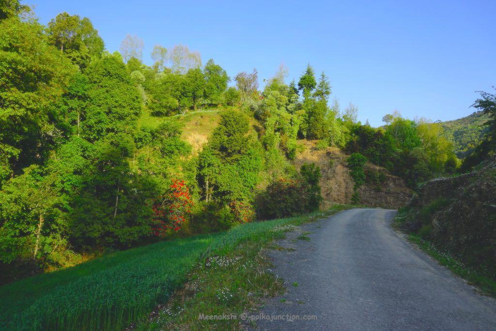 Parvada-village
