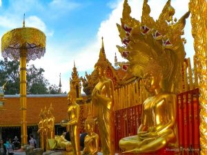 25-things-to-do-chiang-mai